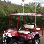 Custom-golf-carts-hawaii-004
