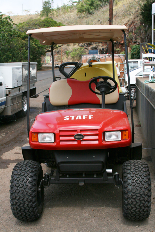 custom_golf_carts_hawaii3