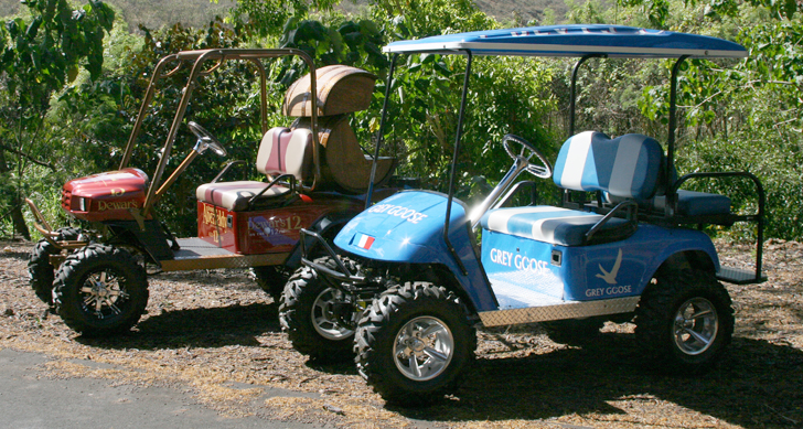 custom_golf_carts_hawaii5